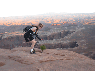 This is me at the Grand View Point in Canyonlands. I liked this tiny tree that had found a home in a rock crack.