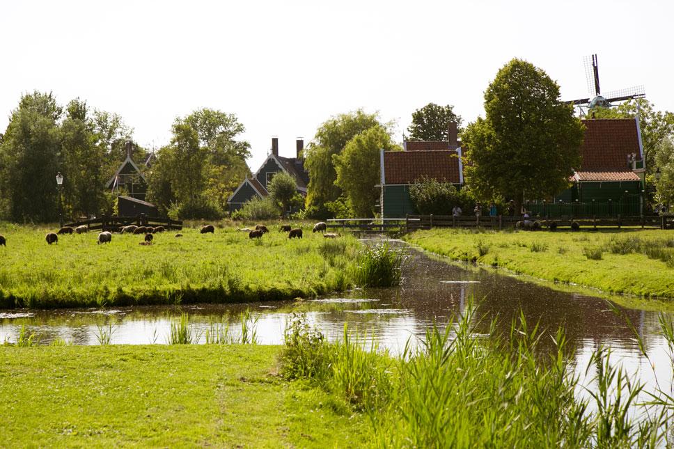 The Zaanse Schans contains a quiet fishing village full of unquiet tourists.