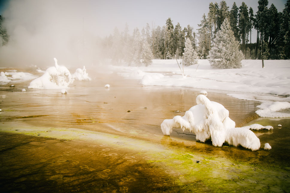 Yellowstone's bacterial mats seemed even more striking when surrounded by a blanched palette.