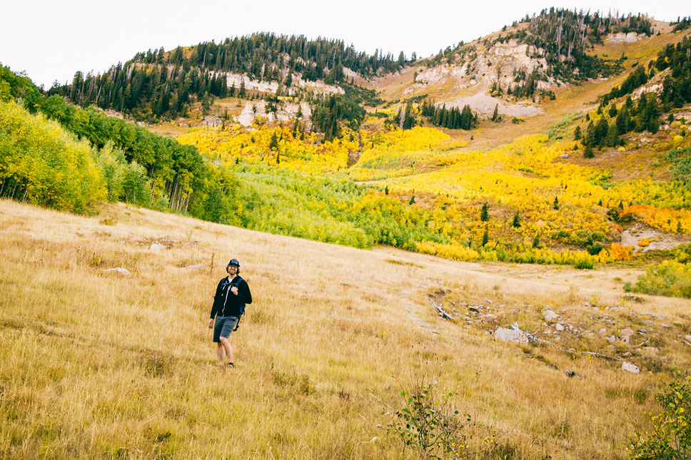 Patches of gilded groves accented the shooting hillsides around Horse Flat.