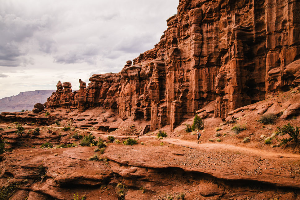 All along the Fisher Towers Trail one finds unusual beauty.